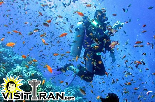 Scuba diving in Kish